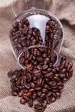 Coffee beans on sackcloth Stock Photo