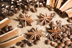 Coffee beans on sackcloth with spices anise and cinnamon sticks Royalty Free Stock Image