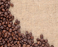 Coffee beans in a sacking background Stock Image