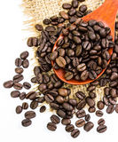 Coffee beans on sacking and wood spoon Stock Image
