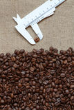 Coffee Beans Sampling Royalty Free Stock Photography