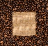Coffee beans scattered on burlap Stock Images
