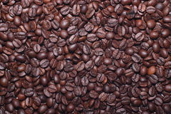 Coffee. A coffee beans scattered evenly Royalty Free Stock Photos