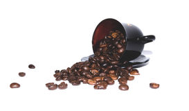 Coffee beans scattered on white background, brown coffee cup Stock Photos