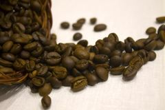 Coffee beans scattered on a white tablecloth, overturned basket Royalty Free Stock Image