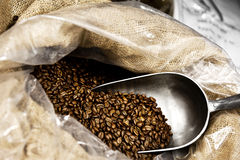 Coffee beans with scoop Royalty Free Stock Images