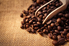 Coffee beans and a scoop. For background Royalty Free Stock Image