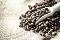 Coffee beans and a scoop. For background Stock Photo