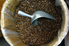 Coffee Beans and Scoop Stock Image