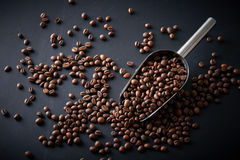 Coffee beans in a scoop on a black background Stock Photo