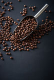 Coffee beans in a scoop on a black background Stock Image