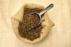 Coffee Beans With Scoop Royalty Free Stock Image