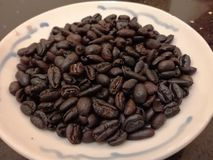 Malaysian coffee beans. Coffee beans are the seeds of the genus Coffee, and the fruit of the genus is similar to cherries, and the coffee beans are the stone royalty free stock image