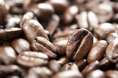Coffee Beans with Selective Focus Stock Image