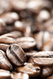 Coffee Beans with Selective Focus Stock Photo