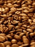 Coffee beans (shallow DOF) Stock Photos