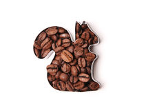 Coffee beans in the shape of squirrel on a white background. Isolated Stock Photos