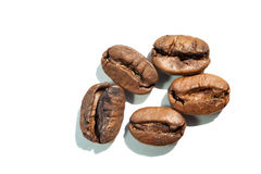 Coffee beans with sharp shadow,  macro Stock Images