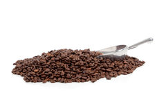 Coffee beans with silver scoop on white Stock Images