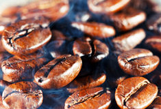 Coffee beans with smoke. Stock Images
