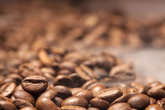 Coffee beans and smoke Royalty Free Stock Images