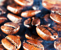 Coffee beans with smoke. Royalty Free Stock Image