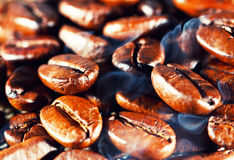 Coffee beans with smoke. Macro Royalty Free Stock Photography