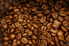 Coffee beans. Some coffee beans in the kitchen interior Royalty Free Stock Image