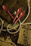 Coffee beans Stock Image