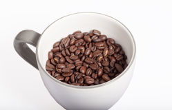 Coffee beans. Some coffee beans on white background Royalty Free Stock Images