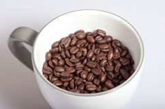 Coffee beans. Some coffee beans on white background Stock Image