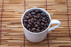 Coffee beans. Some coffee beans in a white cup royalty free stock photos