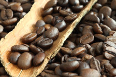 Coffee beans. Some coffee beans with wooden rind stock photo