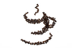 Coffee Beans. Sorting to cup of coffee beans Stock Image