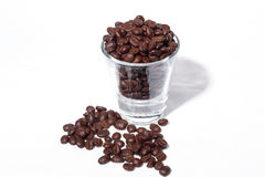 The Coffee Beans. Special type of coffee beans origin from gayo highland, Indonesia Stock Image