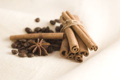 Coffee beans and spices. Cinnamon, anise and coffee beans stock images