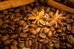Coffee beans and spices Royalty Free Stock Images