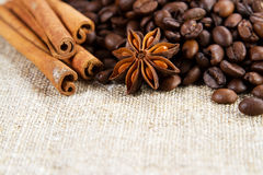 Coffee beans with spices Royalty Free Stock Photos