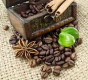 Coffee beans and spices Stock Photos