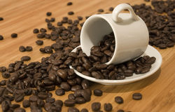 Coffee beans spilled. From white cup onto brown wooden table Royalty Free Stock Photos