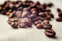 Coffee beans. spilled coffee beans. Beans Stock Image