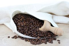 Coffee beans spilling from burlap sack. Royalty Free Stock Photo