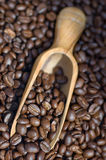 Coffee beans spilling out of wooden scoop. Close up of coffee beans spilling out of wooden scoop Stock Photo