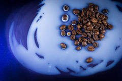 Coffee Beans Spilt on Milk Royalty Free Stock Images