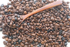 Coffee beans with spoon Royalty Free Stock Image