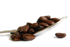 Coffee Beans on Spoon Royalty Free Stock Images