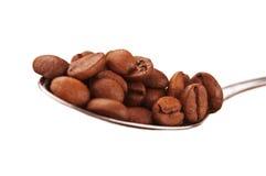 Coffee beans on a spoon Stock Photos