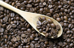 Coffee beans on spoon Stock Photography
