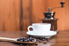 Coffee beans with spoon Stock Photography
