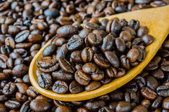 Coffee beans on spoon Stock Photo